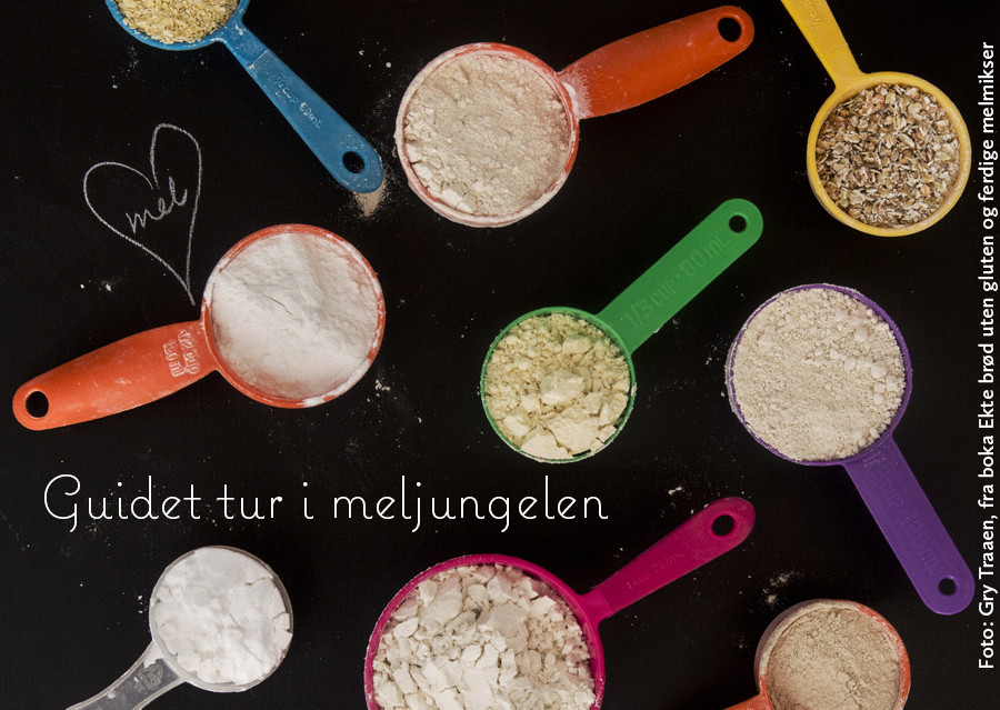 Guidet hanletur i meljungelen, hjelp til å handle glutenfrie meltyper og ingredienser